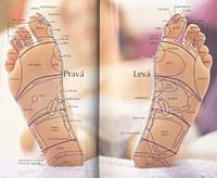 Reflexní body na chodidle